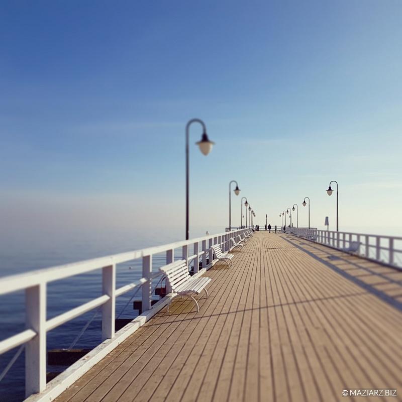 zakład fotograficzny Gdynia